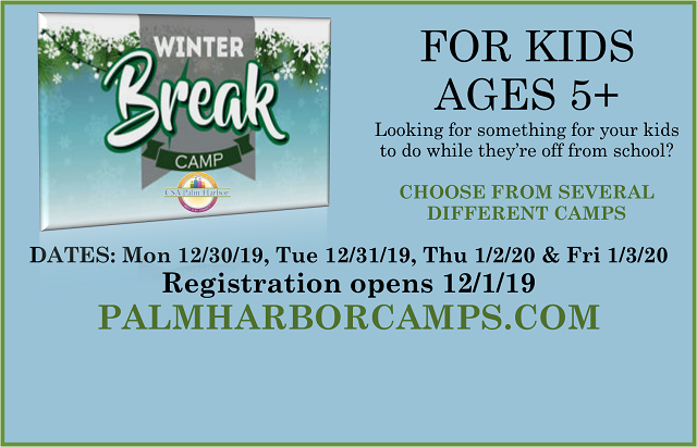 NEW Winter Camps. Registration now open!