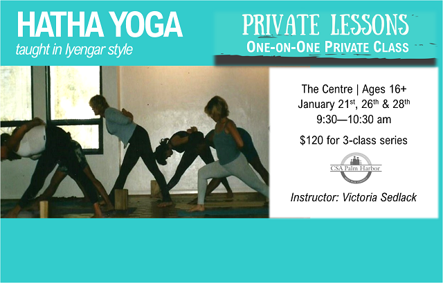 Private Yoga Lessons – 3 class series available!